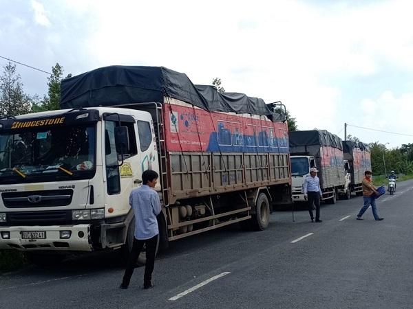 Tân Á Đại Thành kết hợp cùng Ủy ban Mật trận Tổ Quốc tỉnh Bến Tre trao tặng hơn 200 bồn nước cho người dân huyện Châu Thành 3